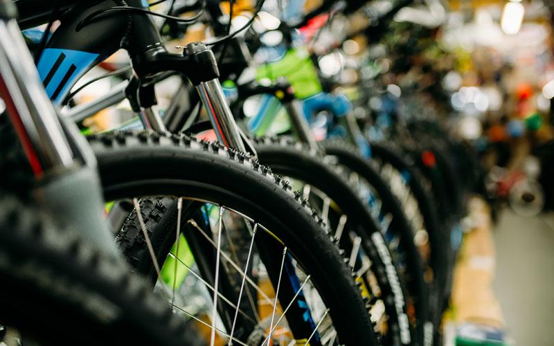 Fahrradreifen Focus - Fahrrad Graf
