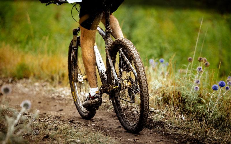 Mountainbike - Fahrrad Graf